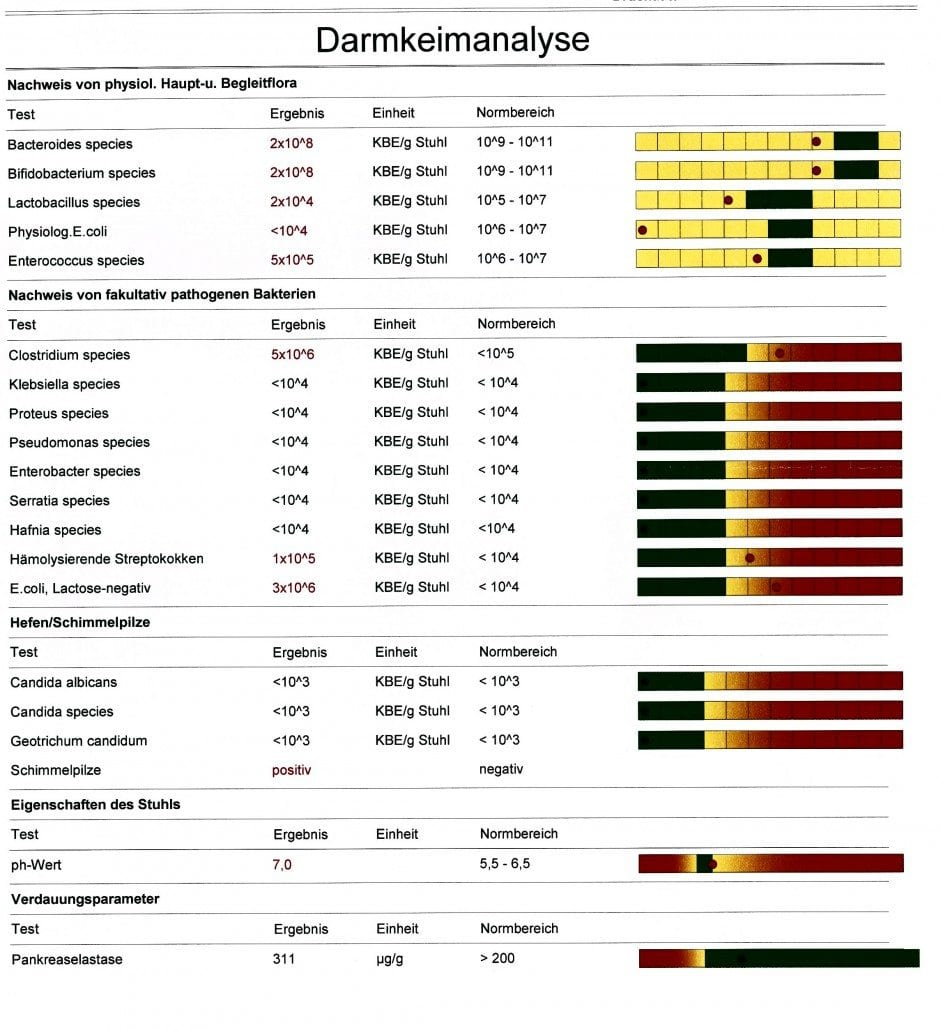 zeigt darmkeimanalyse bei darmfehlbesiedelung fuer eine darmsanierung