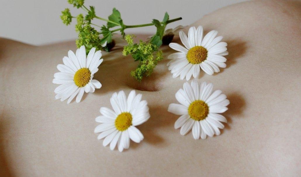 Heilpflanzen die auf Bauch liegen