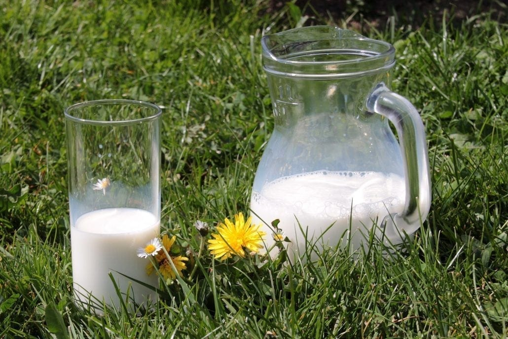 Milchkrug im Gras