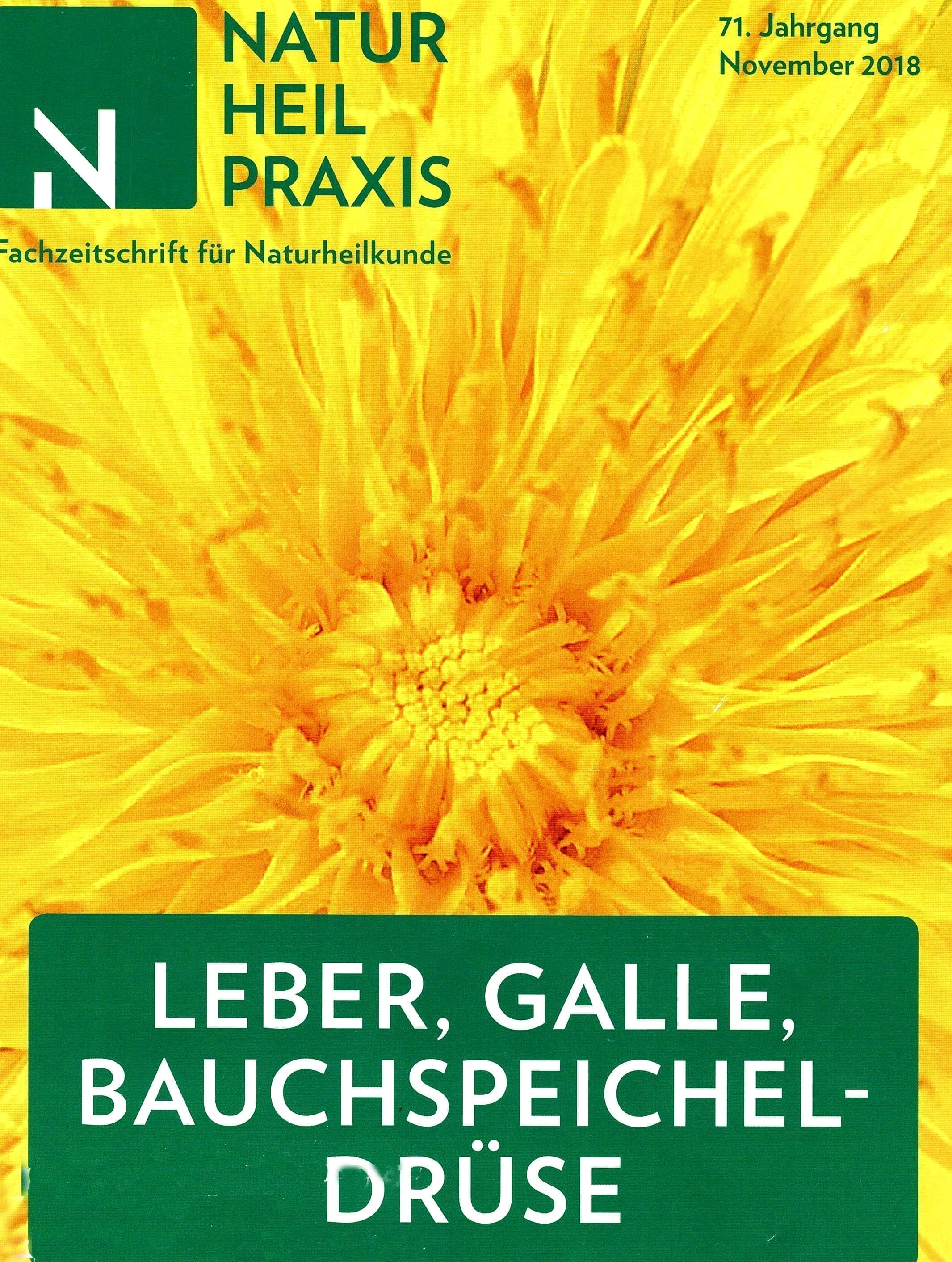 Cover FAchzeitschrift Naturheilpraxis mit gelber Blume